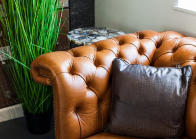 trendy leather sofa and plants